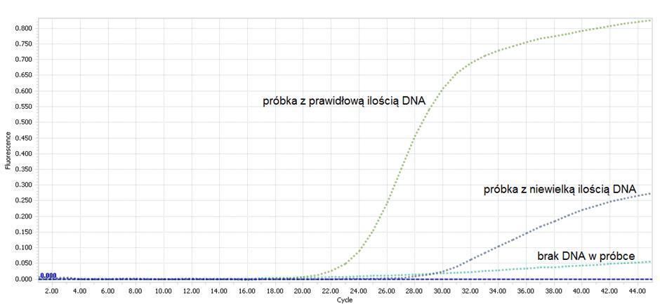wykres ilości DNA w próbce